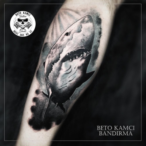 Köpek Balığı Dövmesi - Shark Tattoo